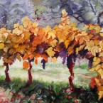 Vineyard Near Cortona by Ann Rhodes