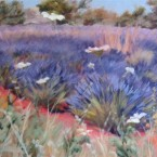 Weeds in the Lavender Field by Ann Rhodes