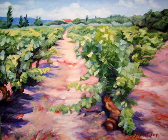 Angle of the Vineyard by Ann Rhodes
