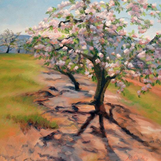 Shadow of the Apple Tree, Fine Art by Ann Rhodes