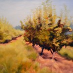 Summer Orchard IV, Fine Art by Ann Rhodes
