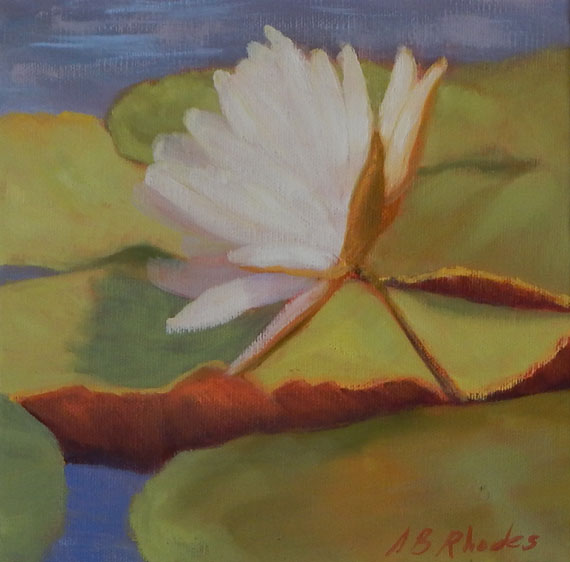 ABG Lily 4